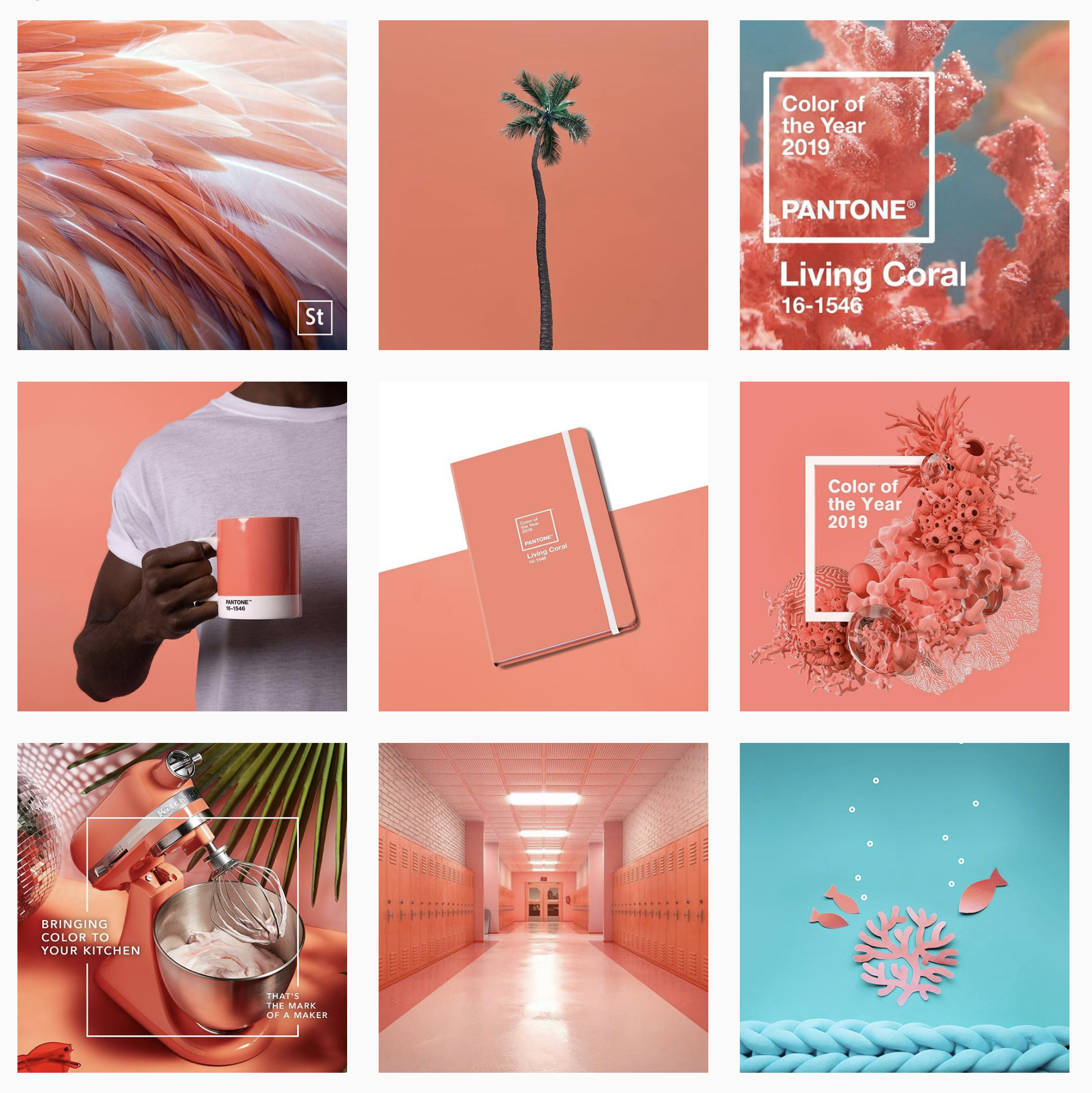Collage of top posts on Instagram featuring Pantone Colour of the Year 2019 Living Coral