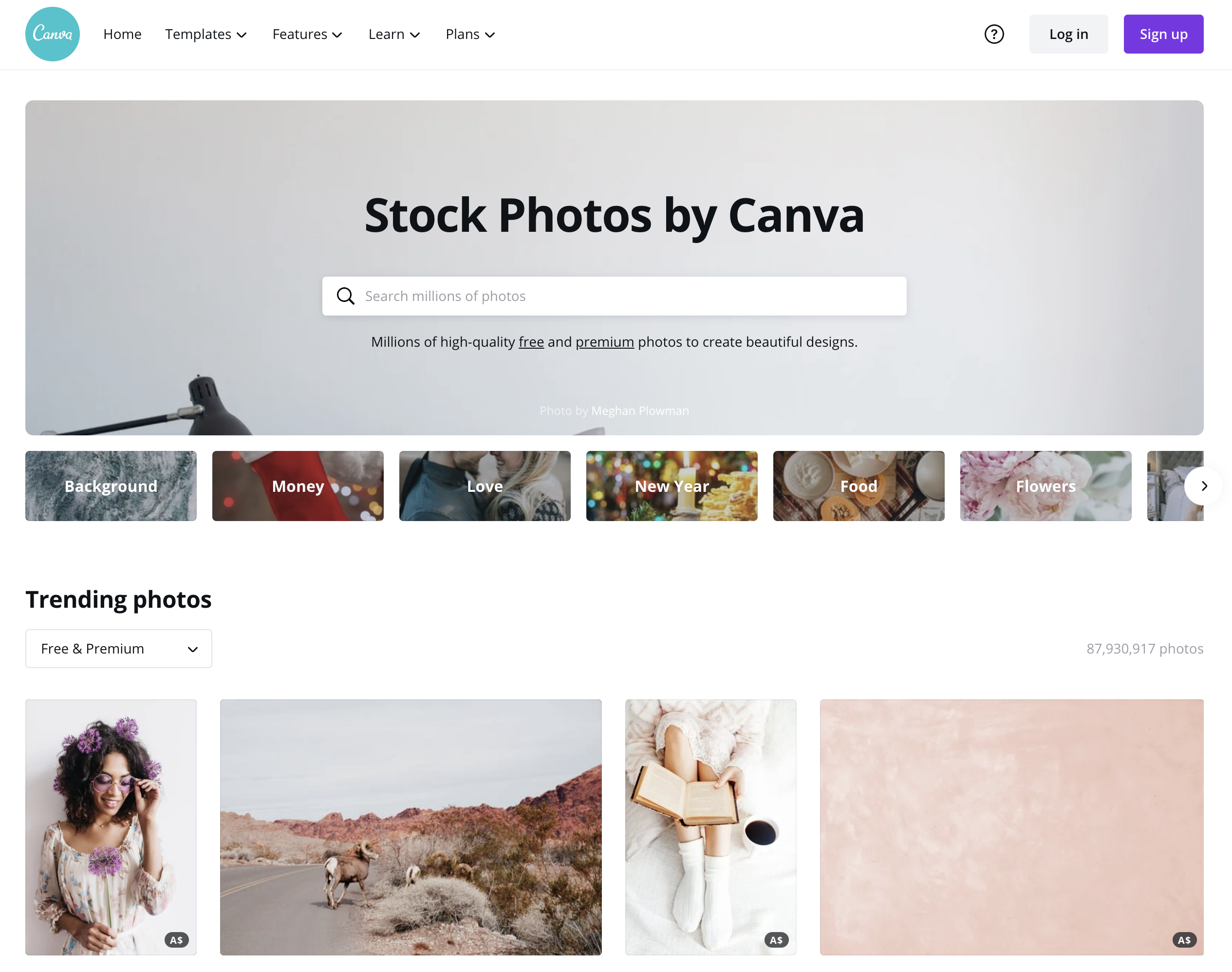 Screenshot of the Canva Stock Photos page