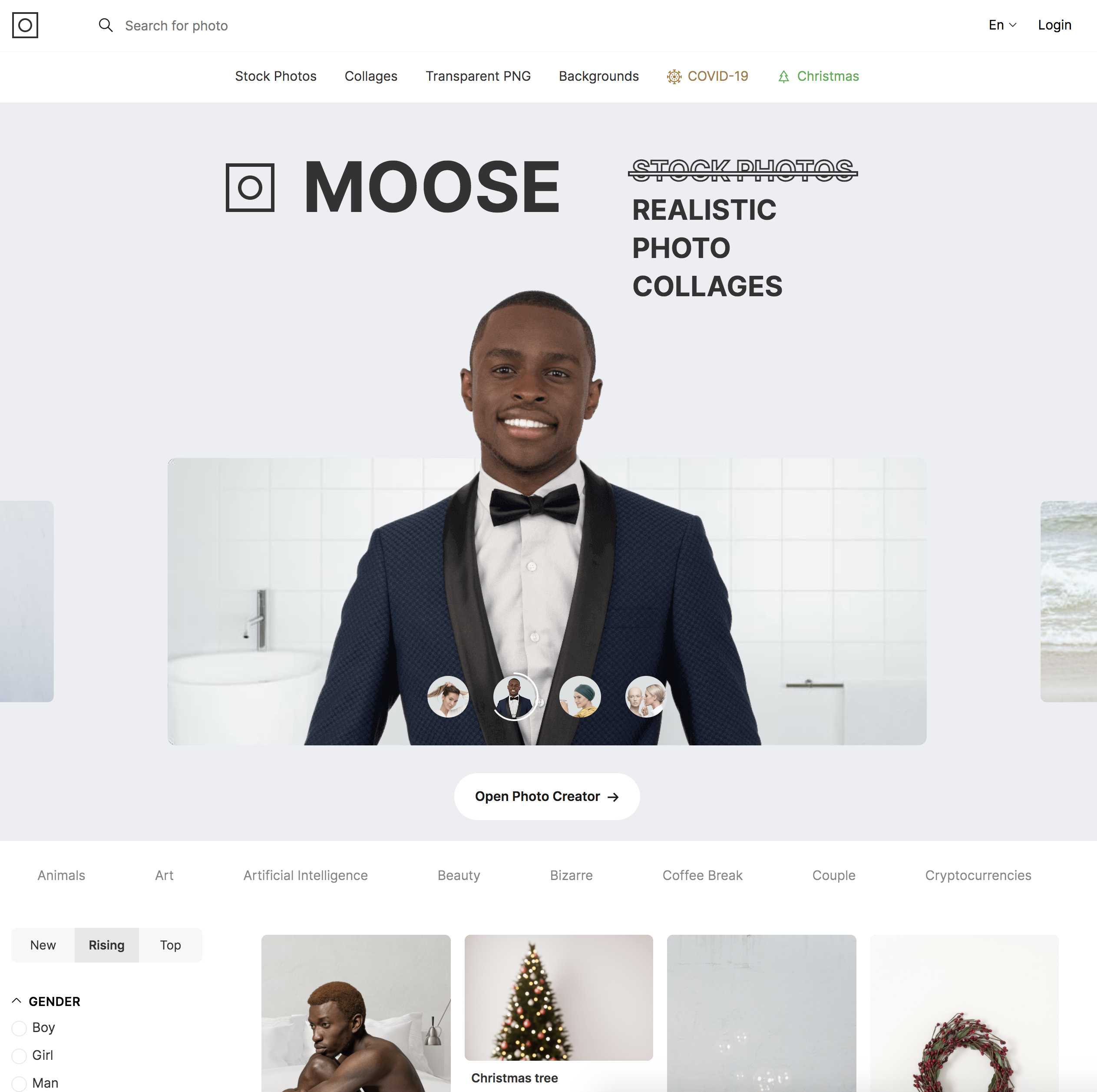 Screenshot of the Moose page by Icons 8